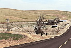 Old Homestead near Wasco, Oregon