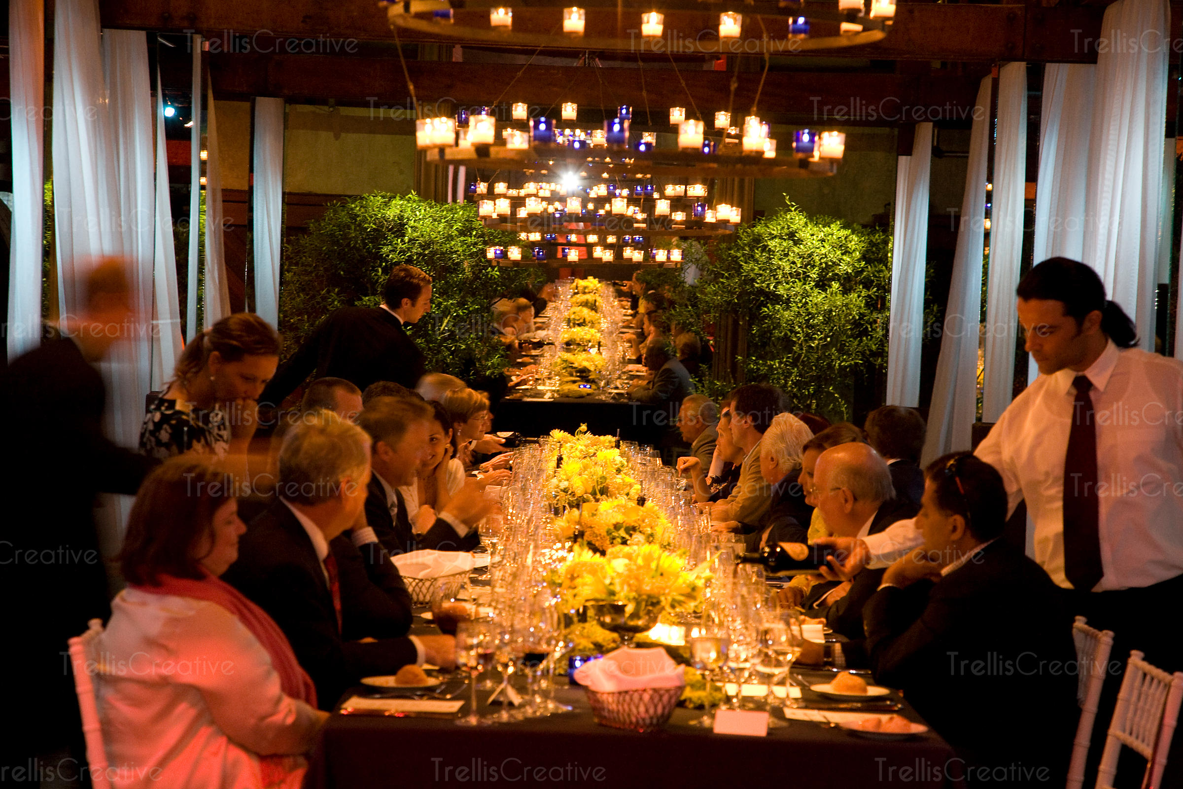 Guests seated at a long elegantly decorated table wait to be served