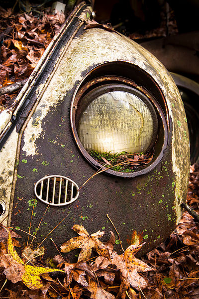 VW Bug Eye