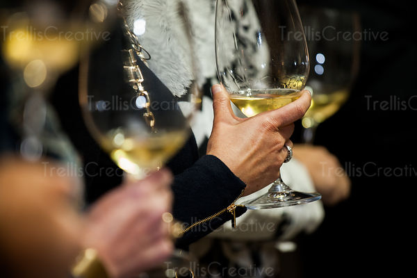 Wine connoisseurs examining white wine at tasting event
