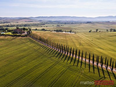 Aerial view of cypress tree lined road in Tuscany, Italy