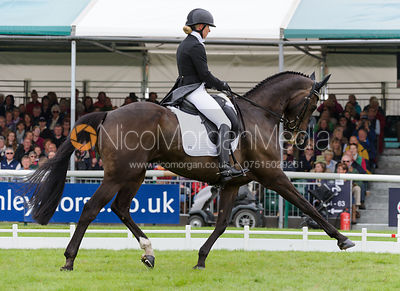 Bettina Hoy and LANFRANCO TSF - dressage phase,  Land Rover Burghley Horse Trials, 6th September 2013.