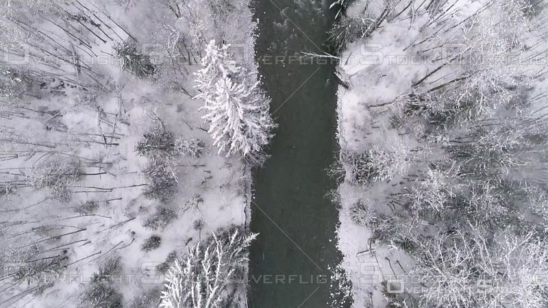 Overhead Aerial Following Cold Forest River Framed by Snow Trees. Index Washington USA