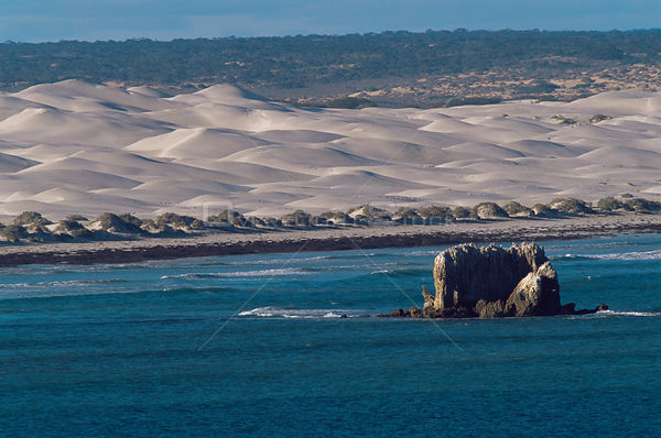 Scenic view of sand dunes from the Head of the Bight, Yalata, The Nullabor, South Australia