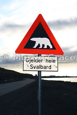 Polar Bear warning road sign, Longyearbyen, Svalbard