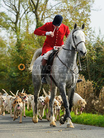 Cottesmore huntsman Andrew Osborne blowing his horn - The Cottesmore at Langham.