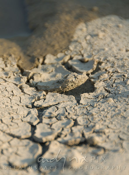 Dry, cracked mud on the banks of the Orange River