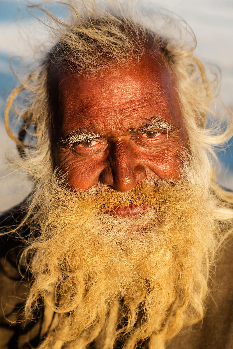 Portrait of a Sadhu with a Long Beard