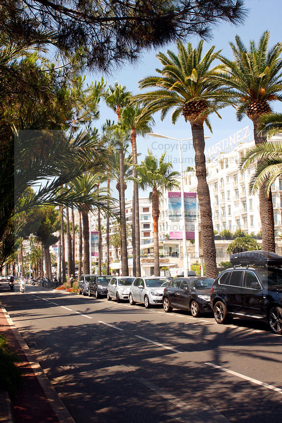 Cannes French Riviera