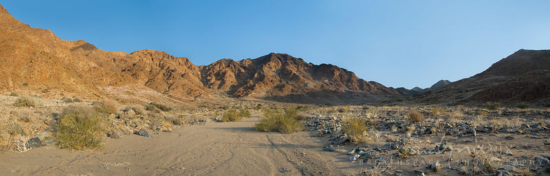 Panoramic view of a dry river bed lined with sparse dry desert vegetation and rocks with barren mountains lit by low sun, cle...