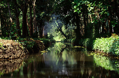 India - Kerala - The Backwaters of Kerala