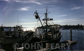 Reina Del Mar Fishing Boats