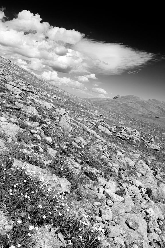 HIGH TUNDRA ROCKY MOUNTAIN NATIONAL PARK COLORADO BLACK AND WHITE VERTICAL
