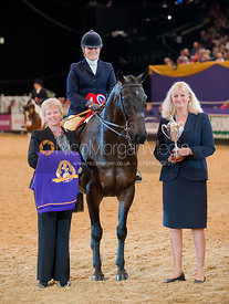 Angharad Fisher and I'm Clover Too, Search for a Star Championship, Horse of the Year Show 2010