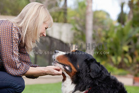 Dog-Mom-Scratching-Bernese-Dog-Chin