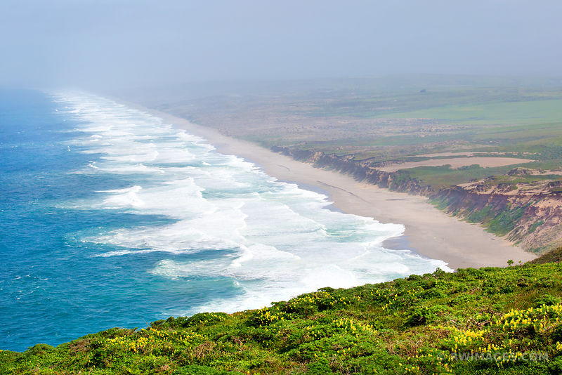 THE GREAT BEACH POINT REYES NATIONAL SEASHORE CALIFORNIA