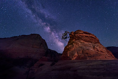 Lone Tree and the Milky Way