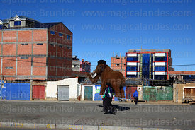 A man carries a large mammoth figure from the Ice Age film along a street, El Alto, Bolivia