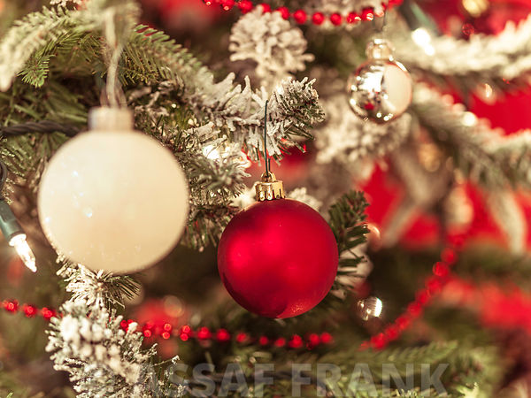 Colorful ornaments hanging on Christmas tree