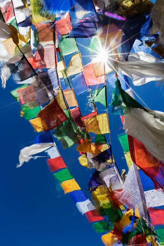 Looking up at Prayer Flags