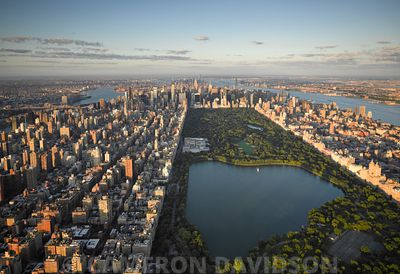 Aerial of Central Park in the early morning.