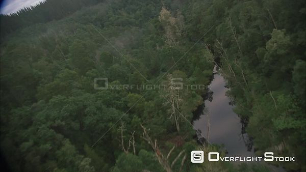 Aerial shot over a lush green forest with a river running through it. Eastern Cape South Africa