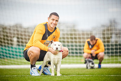 Hull City FC and hearing dog puppies