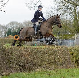 jumping a hedge on Mann's