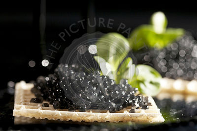 Sandwiches with black caviar on black background