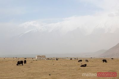 Landscape near Karakul lake, Xinjiang, China