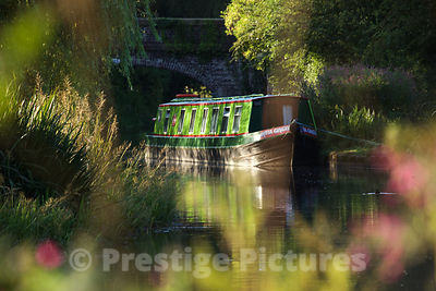 Early Sunny Morning Scene of a Narrow Boat nestling under a Canal Bridge in Cheshire