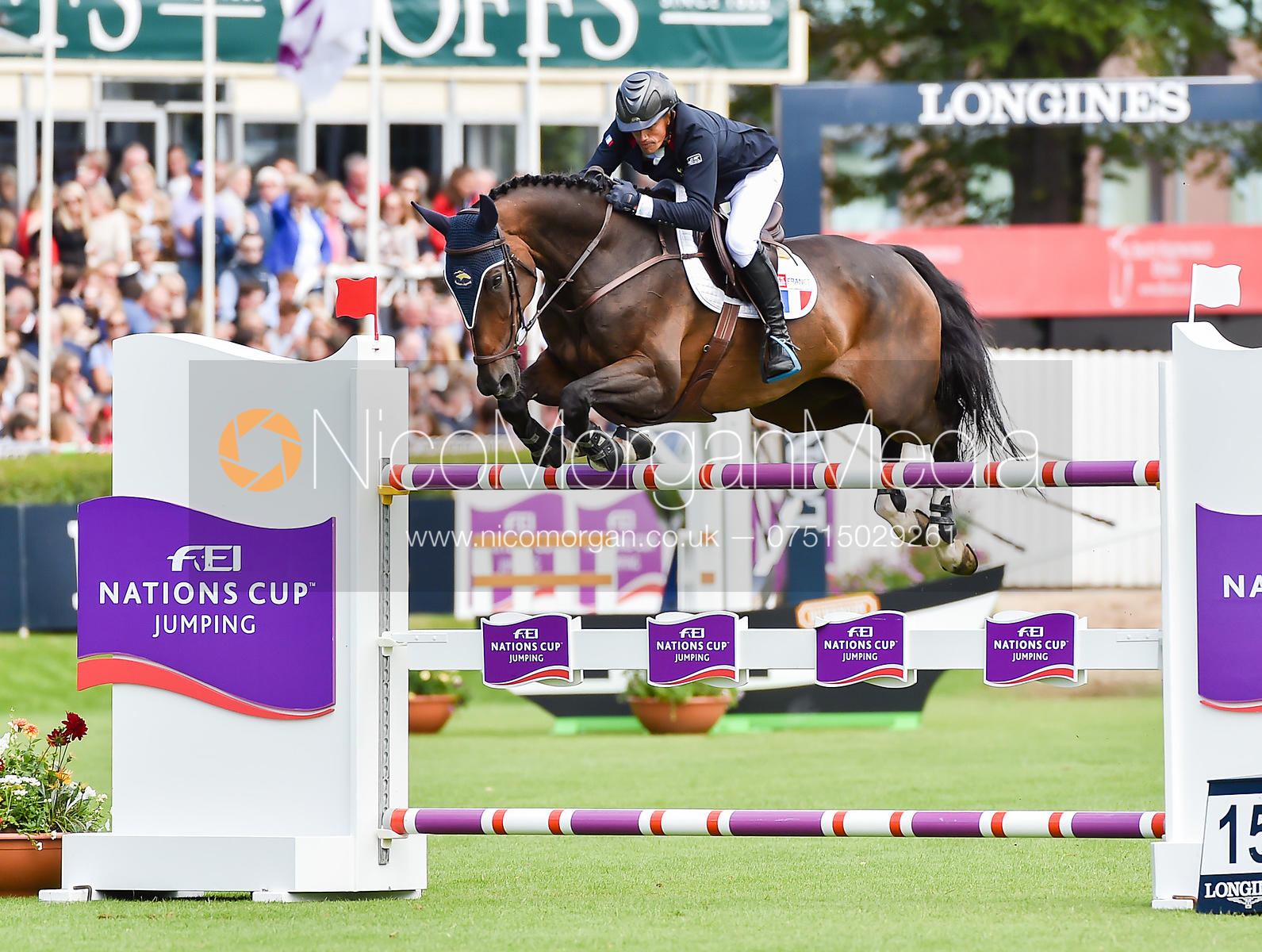 Olivier Robert and Eros - FEI Nations Cup, Dublin Horse Show 2017