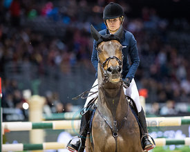 Bordeaux, France, 2.2.2018, Sport, Reitsport, Mercedes-Benz CSI Zurich - Prix FOIRE INTERNATIONALE DE BORDEAUX. Bild zeigt Edwina TOPS-ALEXANDER (AUS) riding Inca Boy van T Vianahof...2/02/18, Bordeaux, France, Sport, Equestrian sport Mercedes-Benz CSI Zurich - LPrix FOIRE INTERNATIONALE DE BORDEAUX. Image shows Edwina TOPS-ALEXANDER (AUS) riding Inca Boy van T Vianahof.
