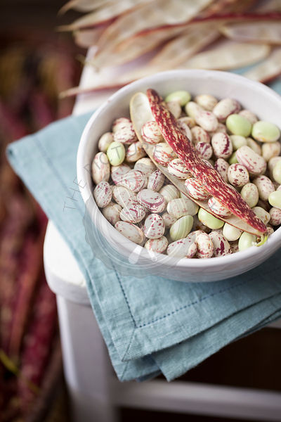 Borlotti Beans in White Bowl on Chair