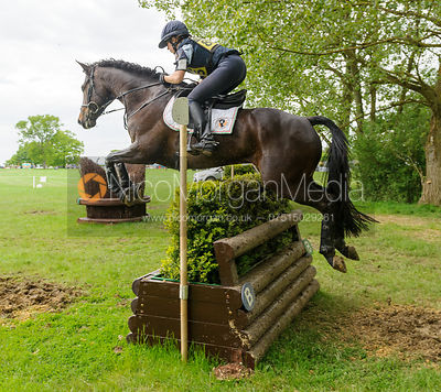 Vittoria Panizzon and ONE NIGHT LOVE - Rockingham Castle International Horse Trials 2016