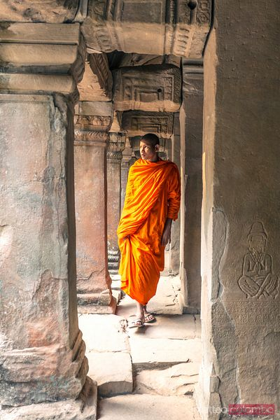 Buddhist monk inside temple, Angkor, Cambodia