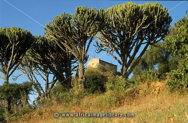 Photos and pictures of: Pantaleon Monastery (Debre Katin) on a