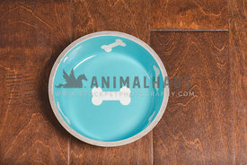 overhead view of turquoise blue empty  dog food bowl