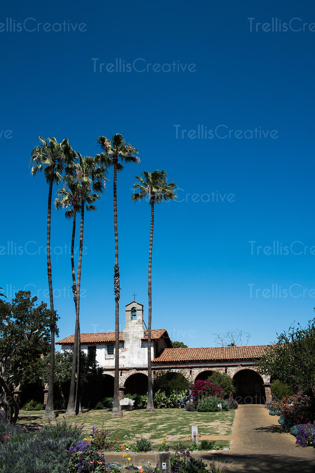 Spanish style Mission church building under blue sky with palm trees in its garden