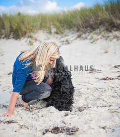 Blonde girl patting Cockapoo mixed breed dog on the beach
