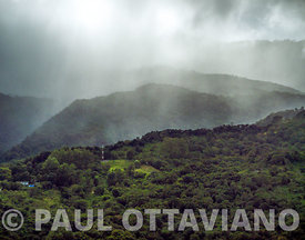 Boquete Cloud Forest 1 | Paul Ottaviano Photography
