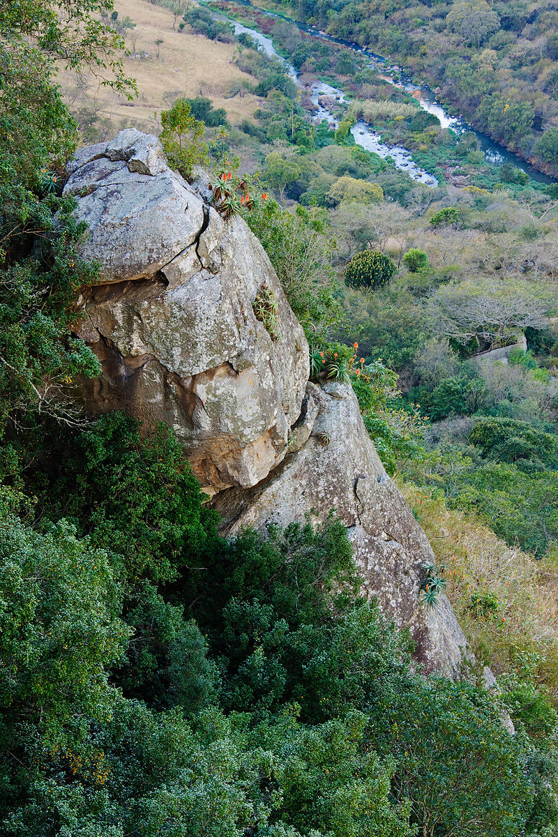 Umgeni Valley Nature Reserve