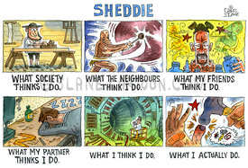 Sheddie - what I actually do.