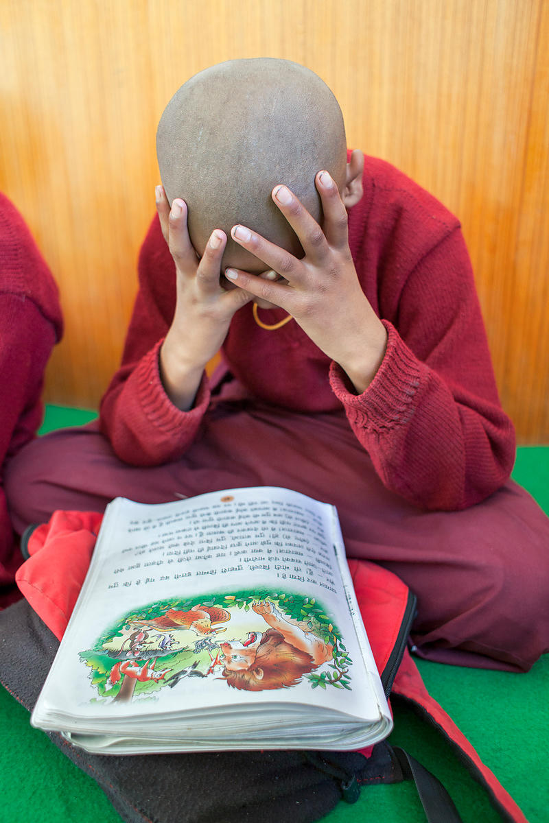 Stanzin Yountan 12 ans moine novice au monastère de Spituk, Ladakh, Inde / Stanzin Yountan 12 years old novice monk at the mo...