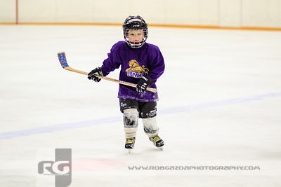 Lumsden Purple Lions
