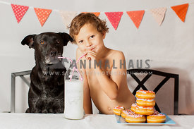 dog and boy sharing milk and dougnuts