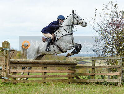 Harriet Walker jumping a hunt jump at Stone Lodge. The Cottesmore Hunt at Tilton