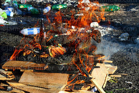 A dead baby llama burning as part of an offering (called a k'oa) to Pachamama, Bolivia