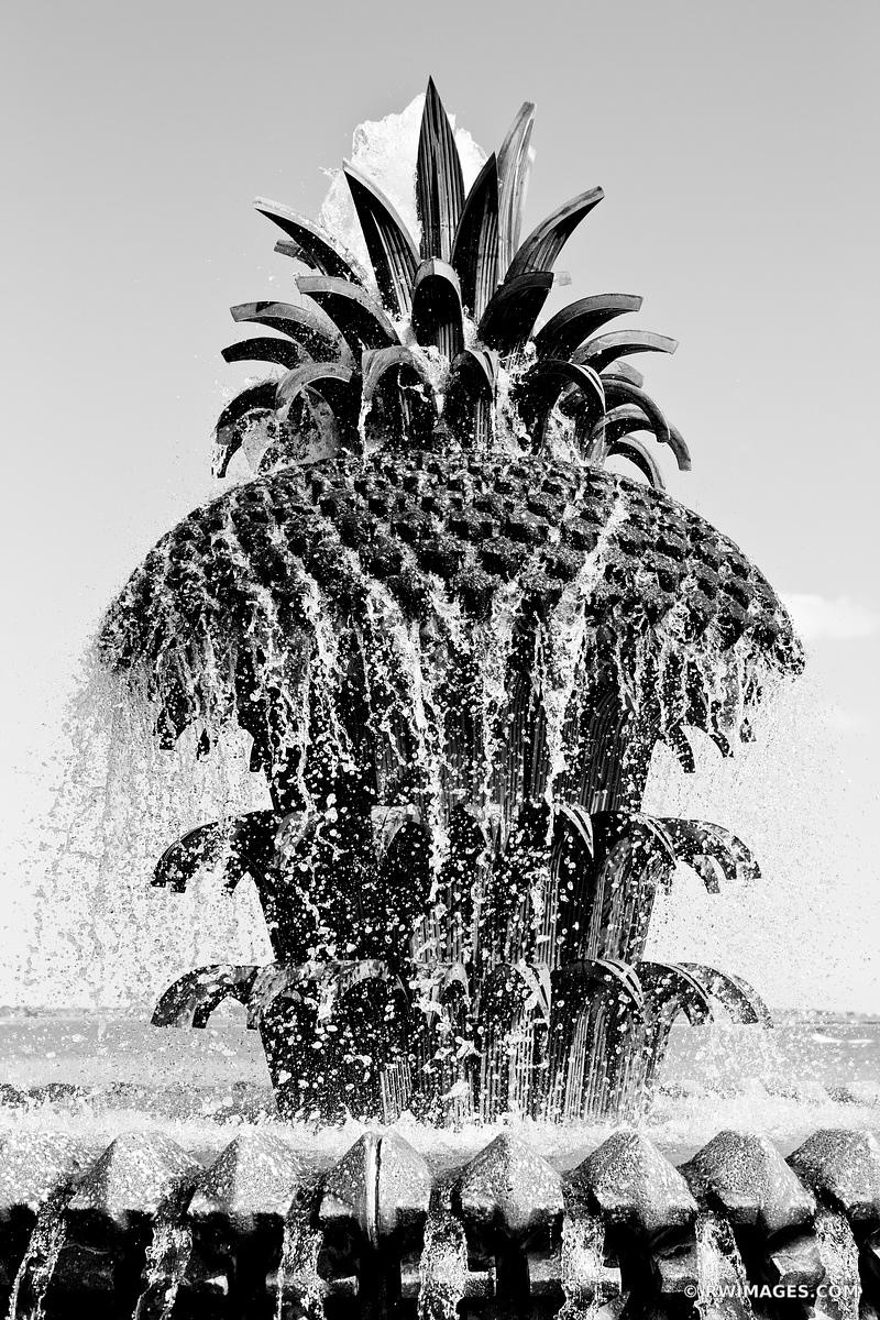 PINEAPPLE FOUNTAIN THE WATERFRONT PARK CHARLESTON SOUTH CAROLINA BLACK AND WHITE VERTICAL