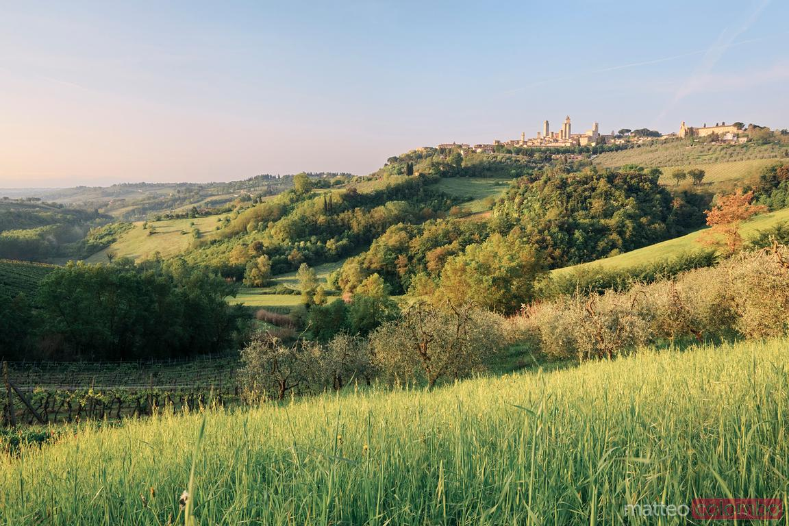 Green valley in the tuscan landscape in spring